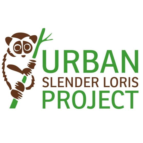 The Urban Slender Loris Project - Logo
