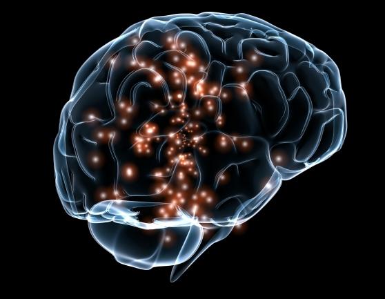 Neuronal_activity.jpg